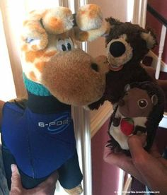 Orso and Elbe meet Charlie in Cornwall, feeling a little nervous that Charlie just invited them to go scuba diving. Scuba Diving, Cornwall, Teddy Bear, Meet, Travel, Animals, Diving, Viajes, Animales