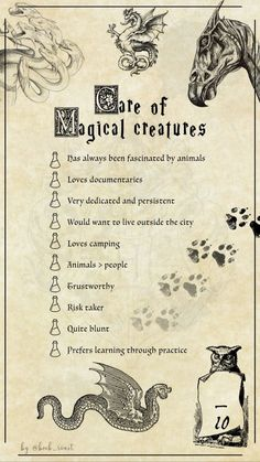 Care of Magical Creatures Harry Potter Classes, Hogwarts Classes, Harry Potter Journal, Classe Harry Potter, Harry Potter Poster, Mundo Harry Potter, Harry Potter Artwork, Harry Potter Spells, Harry Potter Jokes