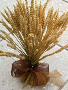 DIY Fall Centerpieces from Nature