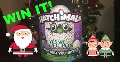 ANOTHER Yes We Coupon Hatchimals Giveaway! Who Wants It? - http://yeswecoupon.com/another-yes-we-coupon-hatchimals-giveaway-who-wants-it/?Pinterest