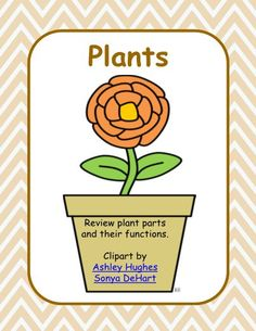 Science- Plant Parts and their Functions This resource includes 2 lesson plans and printables or worksheets. The lesson plan reviews plant parts and their functions. The worksheets or printables allow students to label a plant and build a poster to show the plant parts and their functions. This is a perfect resource to print out for your emergency lesson plans or to use yourself along with your unit on plants.