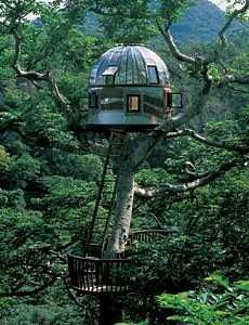 288 Best Greenhouse Tree House Sun Room Images On Pinterest