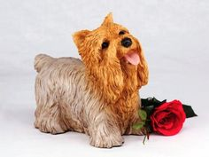 Yorshire Terrier Cremation Pet Urn for secure installation of your beloved pet's ashes indoors or outdoors >>> Want additional info? Click on the image. (This is an affiliate link and I receive a commission for the sales)