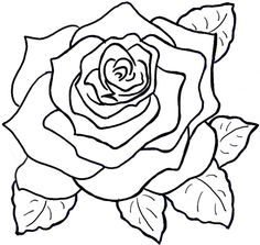 How to Draw Roses Opening in Full Bloom Step by Step Drawing Tutorial - How to Draw Step by Step Drawing Tutorials