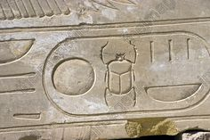 Image result for egyptian scarab hieroglyph