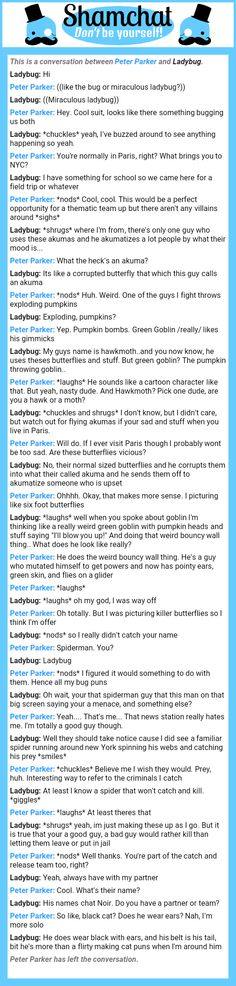 A conversation between Ladybug and Peter Parker
