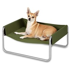 Insect Shield Pet Cot for Dogs and Cats Small Green -- Check out the image by visiting the link.Note:It is affiliate link to Amazon. #fun