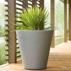 A lusták menedéke: a négyévszakos balkonláda | Gardenista Succulents In Containers, Container Plants, Succulents Garden, Container Gardening, Gardening Tips, Flower Containers, Hanging Succulents, Succulent Gardening, Gardening Vegetables