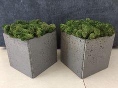 donica betonowa z mchem Planter Pots, Plant Pots