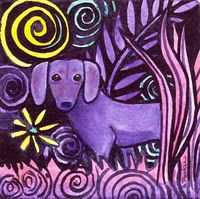 purple doxie!