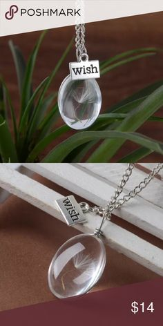 REAL Dandelion Seed, Wish Necklace Oval glass pendant with real dandelion seed!  Chain is 25 inches. Jewelry Necklaces