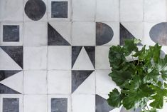 Discover the top 5 antique stone tiles; the ever-popular trend for stone flooring in homes. We've included some of our favourites - learn more at Mandarin Stone! Monochrome, Mandarin Stone, Hallway Flooring, Large Format Tile, Tile Wallpaper, Outdoor Tiles, Black And White Interior, Floor Patterns, Stone Flooring