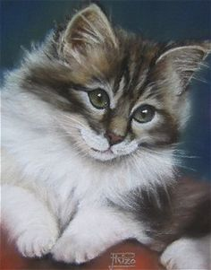 Jacqueline Rizo ~*~ Jacqueline tries through his paintings to shine softness and natural tenderness of animals.