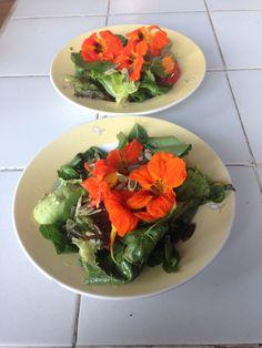Share flowers ;-)