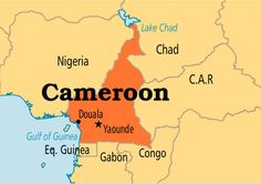 Cameroon is located in western Africa, and features over 240 spoken languages, as well as over 100 written languages.  Its geographical neighbors are Chad and the Central African Republic to the east, Nigeria to the west, and Equitorial Guinea, Gabon, and Congo to the south.