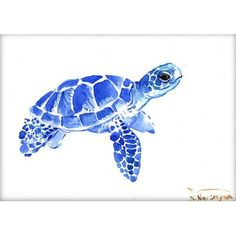 'Tortoise Blue II' by Suren Nersisyan Graphic Art on Wrapped Canvas Americanflat Size: 20 cm H x 30 cm W Painting Prints, Watercolor Paintings, Art Print, Canvas Art, Canvas Prints, Canvas Size, Turtle Painting, Watercolor Animals, Tortoise