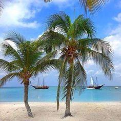 Would you like to start tne new year here?  Aruba maybe this year!!!! www placeok com  #aruba #onehappyisland #unaislafeliz #newyear #2016 #placeok #travellers #travelbloggers #travelblog #travelinspector #travel #awesome #cute # #picoftheday #happy #bestoftheday #igers #amazing #followme #like4like #repost #instagood #instamood #fun #follow #pretty #cool