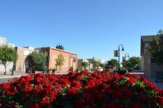 North Parish Avenue, downtown Johnstown, CO.