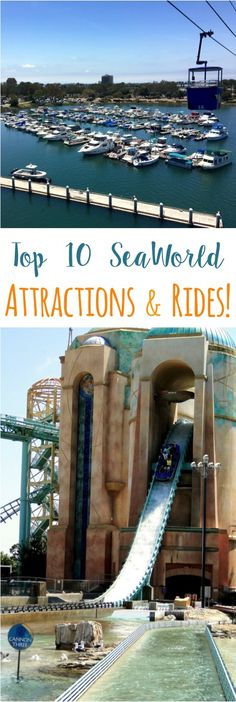 Top 10 SeaWorld San Diego Attractions and Rides for your next Southern California vacation! AD http://thefrugalgirls.com/2016/05/seaworld-top-attractions-top-10-tips.html