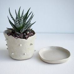 Handmade small chunky stoneware ceramic spiky planter pots.  *Made from brown stoneware clay glazed with satin white glaze , the effect is speckly oatmeal. As they are made by hand they all have a slightly different shape with a natural organic top edge and a slightly wobbly form!  *4 WITH DRAINAGE HOLE AND SAUCER *1 LEFT WITHOUT DRAINAGE HOLE NO SAUCER.  *Dimensions:Top diameter 8.5cm x height 6.5cm approx *Available planted with a small cactus [UK ONLY]  *Shipped in a box  *Possible to…