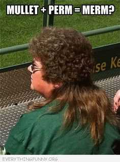 Everything Funny — ha! norma i remembered you telling me about the mullets down in the states making a comeback!!!