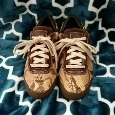 Coach casual shoes Tan/brown snakeskin Coach shoes Coach Shoes Sneakers
