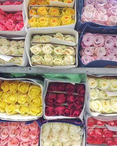A very good morning from New Covent Garden Flower Market! #photooftheday #floweronacaptures