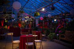 My new top of the list venue (Fairmount Park Horticulture Center)