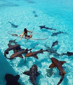 20 Most Beautiful Islands In The World 20 Most Beautiful Islands In The World,Island Inspiration 20 Most Beautiful Islands In The World aesthetic travel italy inspo places Beautiful Places To Travel, Cool Places To Visit, Places To Go, Wonderful Places, Europe Places, Vacation Places, Dream Vacations, Travel Goals, Travel Tips