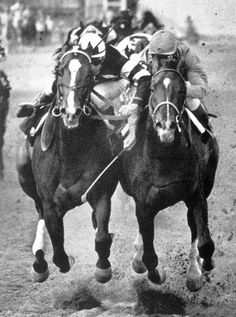 Ridan (on the left) (USA) 1959-1977 B.h. (Nantallah (USA)-Rough Shod (GB) by Gold Bridge (FR) 1st Florida Derby, Blue Grass S, Arlington Classic, Arlington Futurity, Washington Park Futurity; Preakness, American Derby, Travers S, Flamingo S; 3rd Kentucky Derby. Stood in the USA, Ireland, & Australia.