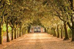 Avorio, #luxury #villa #forrent, in #Tuscany, #Italy