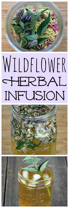 "Make this recipe for ""Flower Power"" Wildflower Herbal Infusion Tea from the Foraging & Feasting book!"