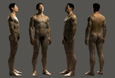 Human anatomy study by Jose Lazaro | 3D | CGSociety