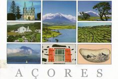Pico Island. Azores Island (Portugal)