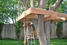 Simple Tree House Platform