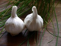Benefits To Eating Raw Garlic - Love Your Heart -Herbs for Health and Healing Tea Recipes, Coffee Recipes, Dessert Recipes, Boondi Raita Recipe, Yuca Al Mojo, Eating Raw Garlic, Carrot Halwa Recipe, Nisha Madhulika, Spring Allergies