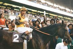 Forego, 1976 Woodward Winner's Circle, photo from Thoroughbredmemories.com