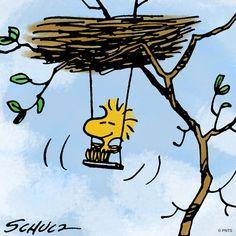 swing (((o(*゚▽゚*)o)))♡ #Woodstock