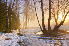 The Sound of Melting Snow by DeingeL.deviantart.com on @deviantART