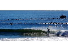 Paddle out for Andy Irons - Huntington Beach, CA