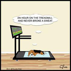 Sleepytown Beagles