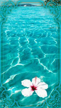 Beach Wallpaper, Flower Wallpaper, Gifs, Beauty Elegant, Beautiful Gif, City Aesthetic, Naruto Wallpaper, Blue Wallpapers, Cellphone Wallpaper