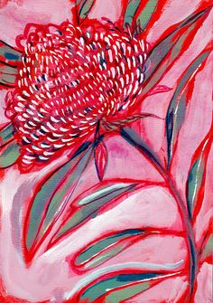 Excited to share the latest addition to my shop: Pink and Red Botanical Study Archival Wall Art Print Australian Native art prints Henri Matisse, Art Floral, February Colors, Australian Native Flowers, Australian Art, Plant Drawing, Drawing Flowers, Metal Tree Wall Art, Guache