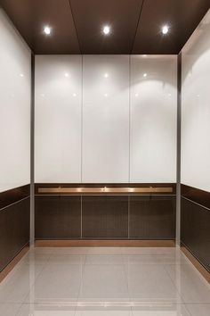 Mix of light toned glass or laminate on upper panels; darker lower panels.  Metal rail and base.  Stone or stone look porcelain tile floor. LEVELe-105 Elevator Interior with custom upper panel insets; lower panels in…