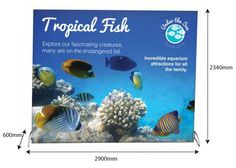 Roller Banners, Pop-Up Stands, Exhibition Display Systems & Outdoor Banners, Exhibition Display, Tropical Fish, Pop Up, The Incredibles, Explore, Frame, Expo Stand, Picture Frame