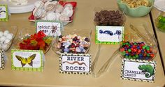 Critter Birthday Party Snack Bar Sign – Food options with signage