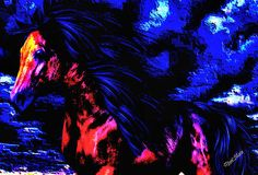 Wild Horse Art Prints