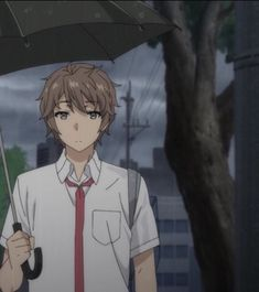Seishun Buta Yarou wa Bunny Girl Senpai no Yume wo Minai Matching Pfp, Matching Icons, Anime Love Couple, Cute Anime Couples, Shokugeki No Soma Anime, Anime Best Friends, Cute Couple Wallpaper, Gothic Anime, Matching Profile Pictures