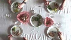 Extrudough: Biodegradable Tableware