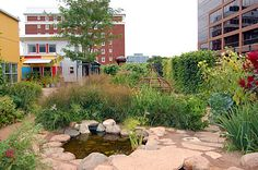 Madison Children's Museum - Madison, WI, USA - a rooftop garden/play space for kids.  Beautiful!